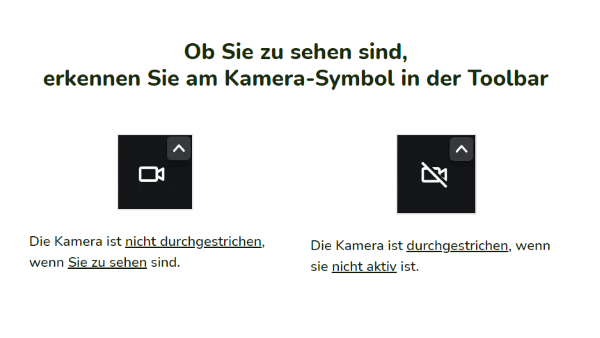 Ob Sie zu sehen sind, erkennen Sie am Kamera-Symbol in der Toolbar